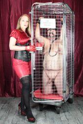 Foto zu Blogeintrag Bilderserie Robi im Käfig