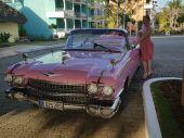 Foto zu Blogeintrag Devoter Chauffeur, keine FI