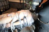 Foto zu Blogeintrag Teil 2 Folien-Bondage, Atemreduzieren & Strom