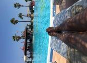 Foto zu Blogeintrag Teamviewer am Pool